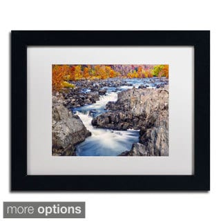 CATeyes 'Great Falls' Framed Matted Art