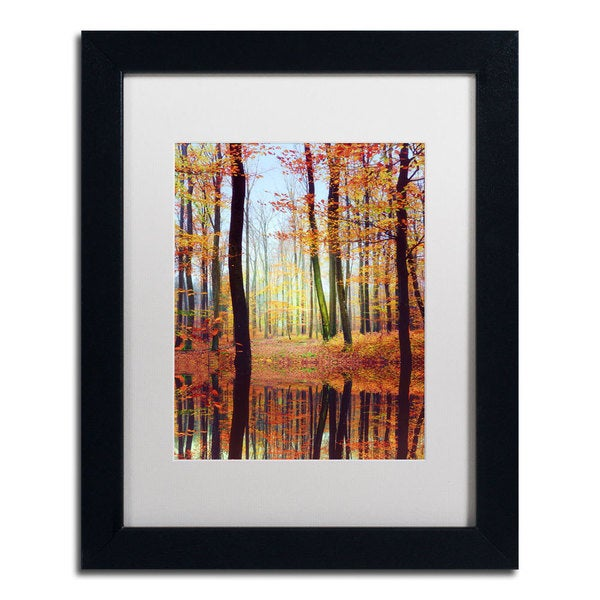 Philippe Sainte Laudy Fall Mirror Framed Matted Art