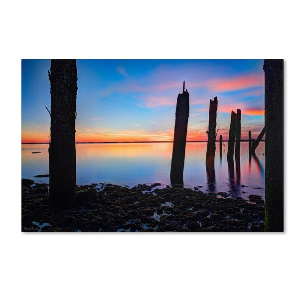David Ayash 'Jamaica Bay Sunset - NYC I' Canvas Art
