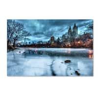 David Ayash 'Frozen Central Park Lake II' Canvas Art - Multi
