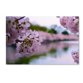 CATeyes 'Cherry Blossoms 2014-2' Canvas Art