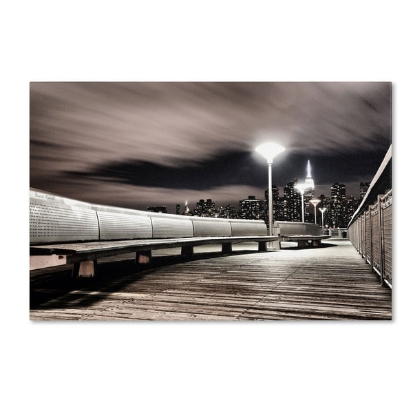 David Ayash 'NYC' Canvas Art