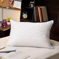 Sealy Posturepedic LiquiLoft Gel Support Pillow