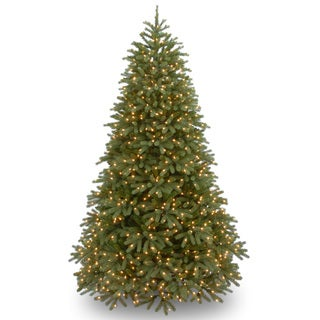 Jersey Fraser Fir Medium Hinged Tree