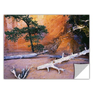 Dean Uhlinger 'Devils Garden' Removable Wall Art