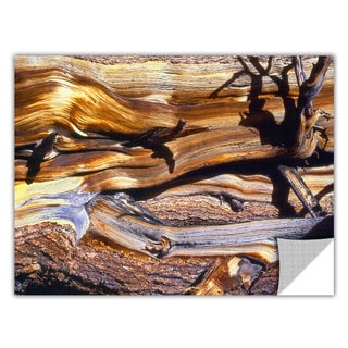 Dean Uhlinger 'Ancient Bristlecone' Removable Wall Art