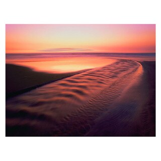 Dean Uhlinger 'Back to the Sea' Unwrapped Canvas - Multi