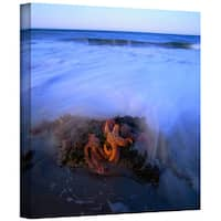 Dean Uhlinger 'Morning Sea Stars' Gallery-wrapped Canvas