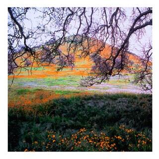 Dean Uhlinger 'Caliente Spring' Unwrapped Canvas - Multi