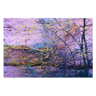 Dean Uhlinger 'Aravaipa Canyon Dusk' Unwrapped Canvas - Multi
