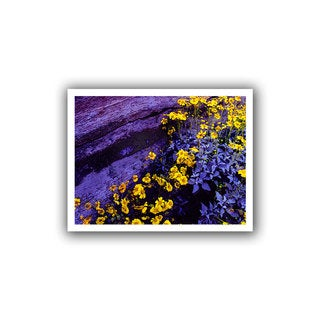 Dean Uhlinger 'Desert Sunflower Dusk' Unwrapped Canvas