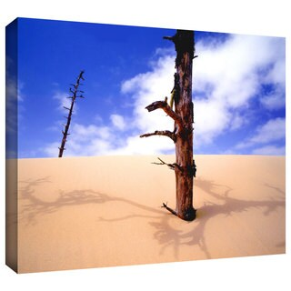 Dean Uhlinger 'Oregon Dunes Noon' Gallery-wrapped Canvas