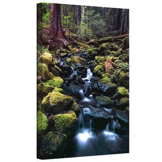 Dean Uhlinger 'Rain Forest Morning' Gallery-wrapped Canvas