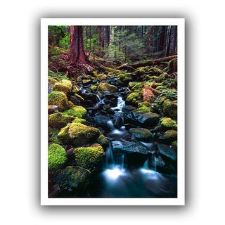 Dean Uhlinger 'Rain Forest Morning' Unwrapped Canvas - Multi