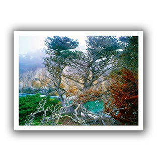 Dean Uhlinger 'Whalers Cove Morning Point Lobos' Unwrapped Canvas