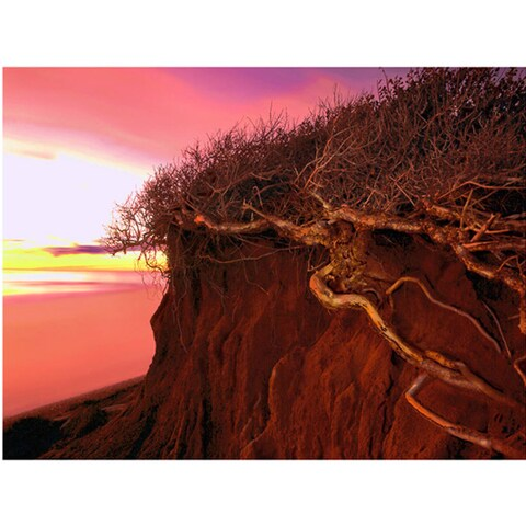 Dean Uhlinger 'Ponto Beach Afterglow' Unwrapped Canvas - Multi