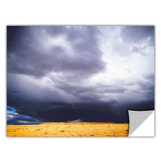 Dean Uhlinger ' Monsoon' Removable Wall Art