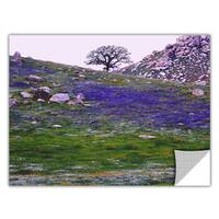 Dean Uhlinger 'Sierra Foothills Spring' Removable Wall Art