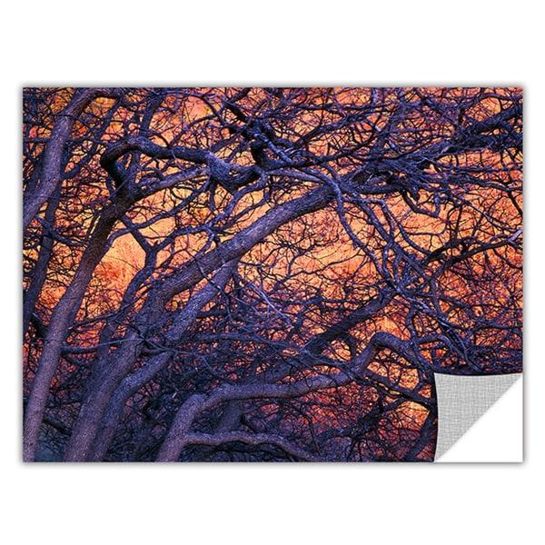 Dean Uhlinger 'Black Oak Sunset' Removable Wall Art - Multi