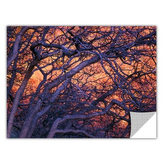 Dean Uhlinger 'Black Oak Sunset' Removable Wall Art