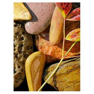 Dean Uhlinger 'Natural World 20' Unwrapped Canvas - Multi