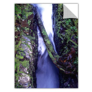 Dean Uhlinger 'Sol Duc River Slot' Removable Wall Art