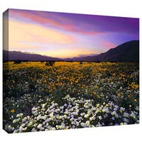 Dean Uhlinger 'ADJ Borrego Desert Spring' Gallery-wrapped Canvas - Multi