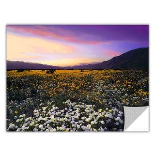 Dean Uhlinger 'ADJ Borrego Desert Spring' Removable Wall Art