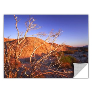 Dean Uhlinger 'Borrego Badlands' Removable Wall Art