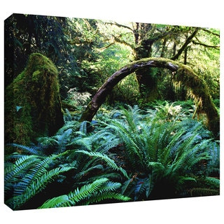 Dean Uhlinger 'Rain Forest Afternoon' Gallery-wrapped Canvas