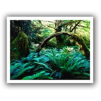 Dean Uhlinger 'Rain Forest Afternoon' Unwrapped Canvas - Multi