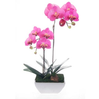 Artificial Silk Phalaenopsis Lavender in White Ceramic Base