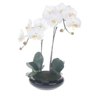 White/ Yellow Artificial Silk Phalaenopsis Orchid Centerpiece with Black Ceramic Base|https://ak1.ostkcdn.com/images/products/9544462/P16725283.jpg?impolicy=medium
