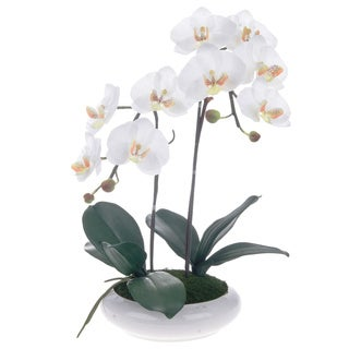 White/ Yellow Artificial Silk Phalaenopsis Orchid Centerpiece with White Ceramic Base