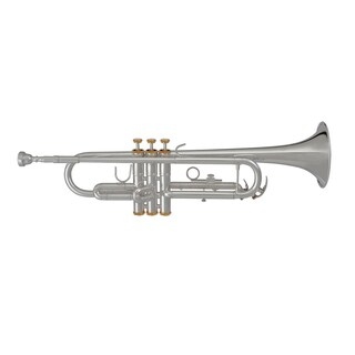 Blessing BTR-1460G Student Bb Trumpet, Silver-plated with Gold Trim