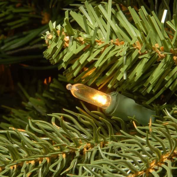 National Tree 6.5 Foot Jersey Fraser Fir Tree