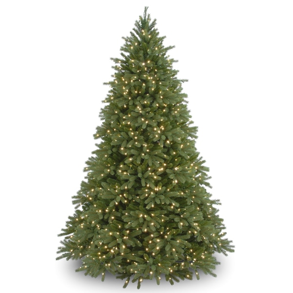 9-foot 'Feel-Real' Jersey Fraser Medium Fir Hinged Tree with 1500 Clear Lights
