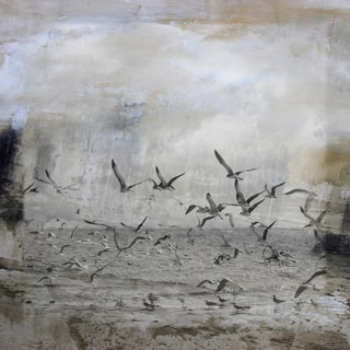 Birds at Sea' Giclee on Canvas Wall Art