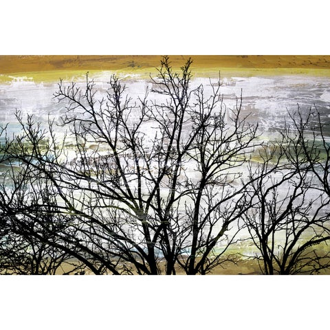 Barren Tree' Giclee on Canvas Wall Art - Multi