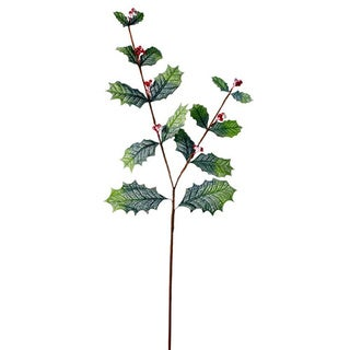 Sage & Co Sage & Co. Frosted 34-inch Holly Spray (Pack of 12)