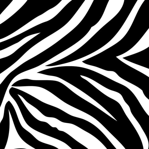 Wall Pops Go Wild Zebra Blox Decals (Pack of 12)