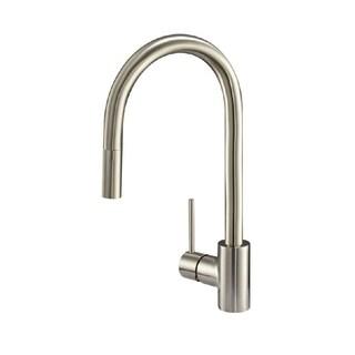 Danze Citron Single-handle Kitchen Citron Pull-down Stainless Steel Faucet