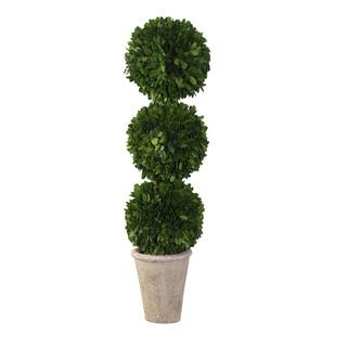 Sage & Co 3-ball English Boxwood Topiary