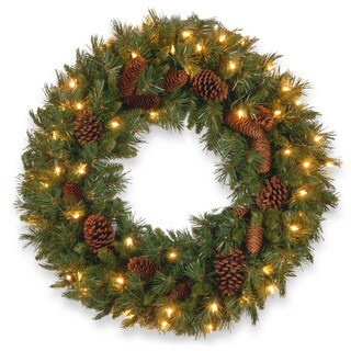 24-inch Avalon Spruce Wreath with Clear Lights