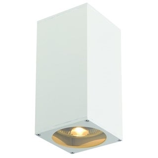 SLV Lighting Big Theo Up-Down Out 2-light Wall Lamp