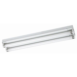 Raptor Lighting 24-inch Shallow Strip Fixture Universal Ballast No Lens (Case Pack of 2 Units)