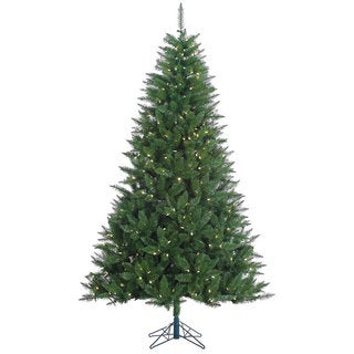 7.5-foot 1176-light Lincoln Fir with 500 Warm White LED Lights