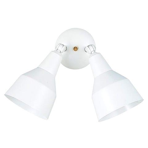 Two-light Adjustable Swivel Flood Light Fixture