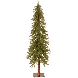 5-foot Hickory Cedar Tree