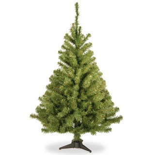 4-foot Kincaid Spruce Tree